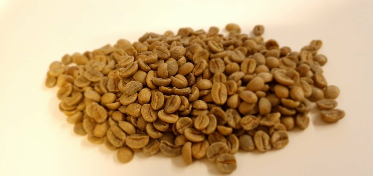 Brazil Natural, Red Cataui, Donas do Cafe, Traceability, 1 kg