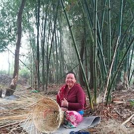 10 bambusplanter i Nepal med digitalt takkebrev