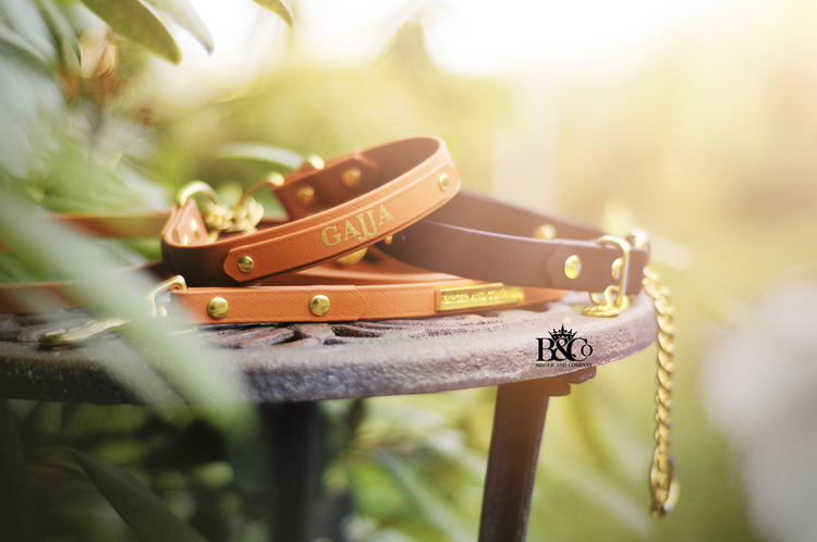 Classic - Martingale chain 2,5cm