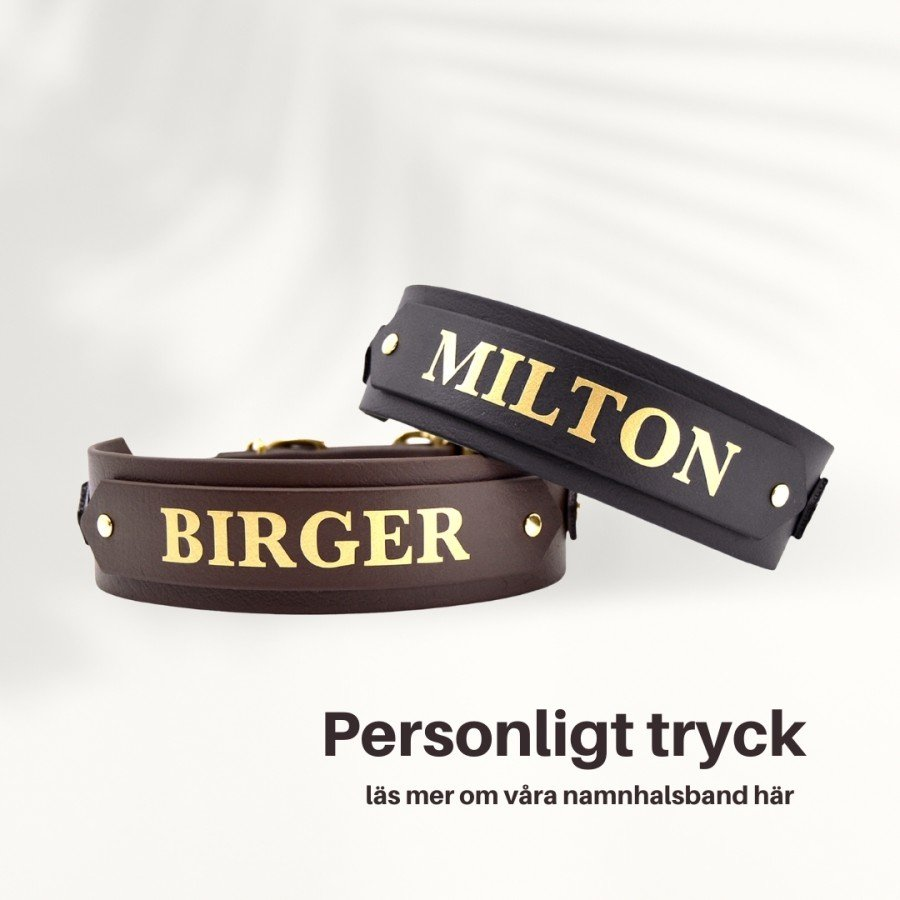 Birger and Company AB