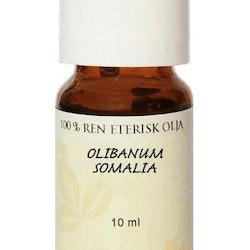 Olibanum (Francinsence-Olja) eterisk olja