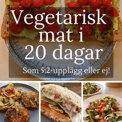 Vegetarisk mat i 20 dagar, som 5:2 eller ej! (Fysiskt häfte och som PDF)