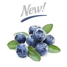 SilverLine - Blueberry Extra