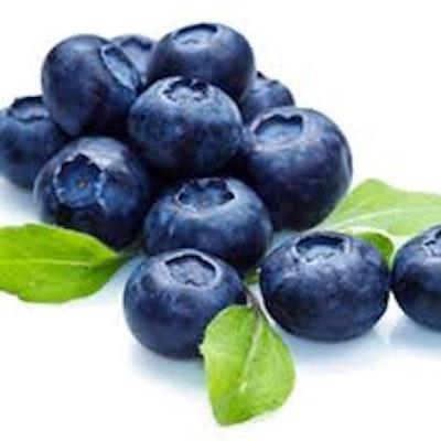 Blueberry Extra