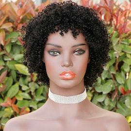 Brazilian Human Hair Wig Short Curly Wig