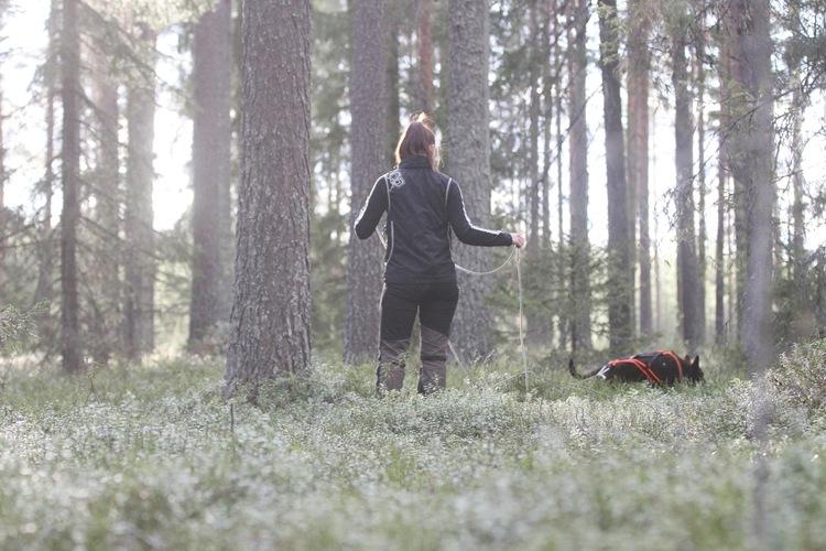VILT & BLODSPÅR GRUNDKURS 29-30/5
