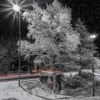 Snø mot gatelys