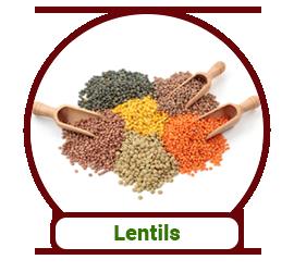 IndianBasket > Lentils