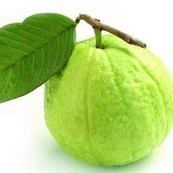 Guava 500gms