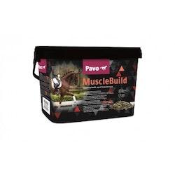 Pavo MuscleBuild 3kg 669kr
