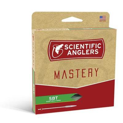 SA Mastery SBT
