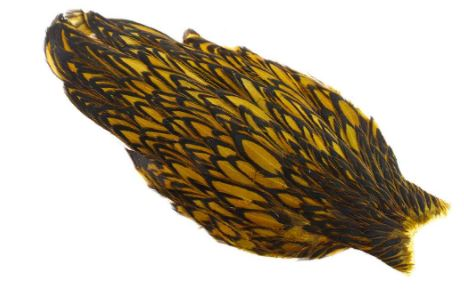 Whiting - American Hen Cape - Black Laced