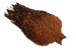 Whiting - American Rooster Cape