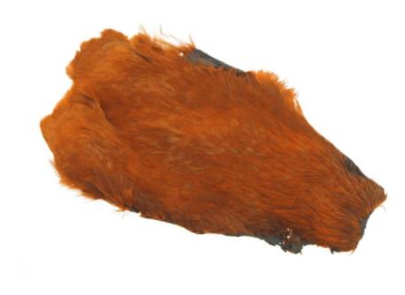 Hen Neck - Soft hackle Burnt Orange