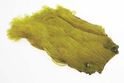 Hen Neck - Soft hackle Golden Olive