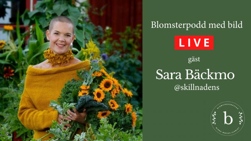 Blomsterpodd med bild - gäst Sara Bäckmo Skillnadens trädgård
