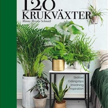 120 krukväxter