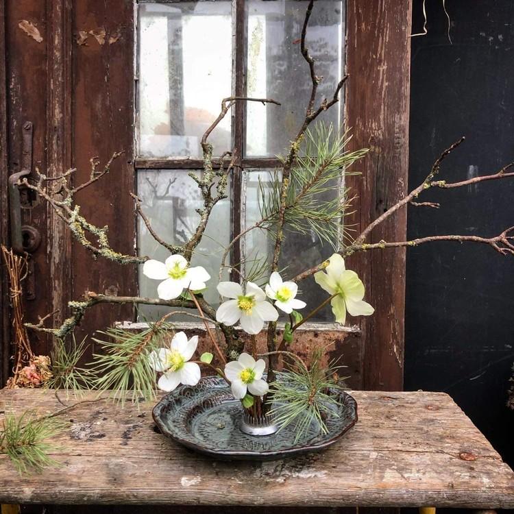 Kenzan blomsterfakir, liten