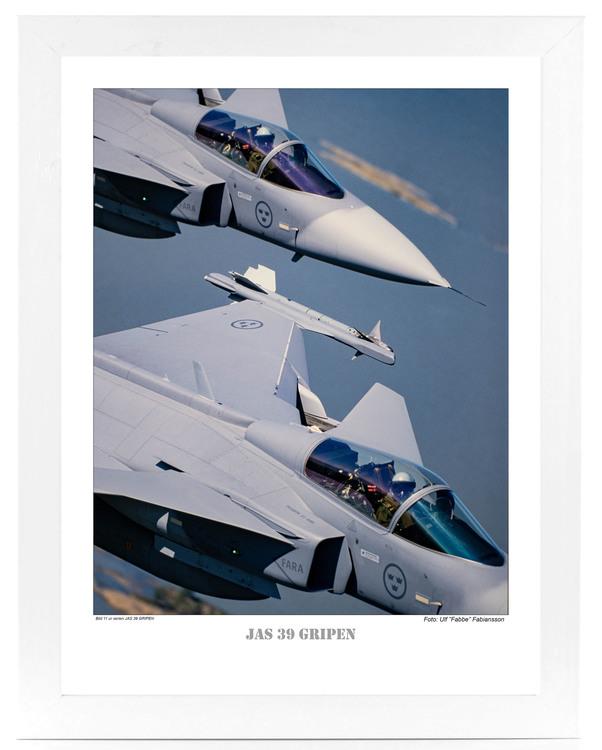 JAS 39 GRIPEN (11)