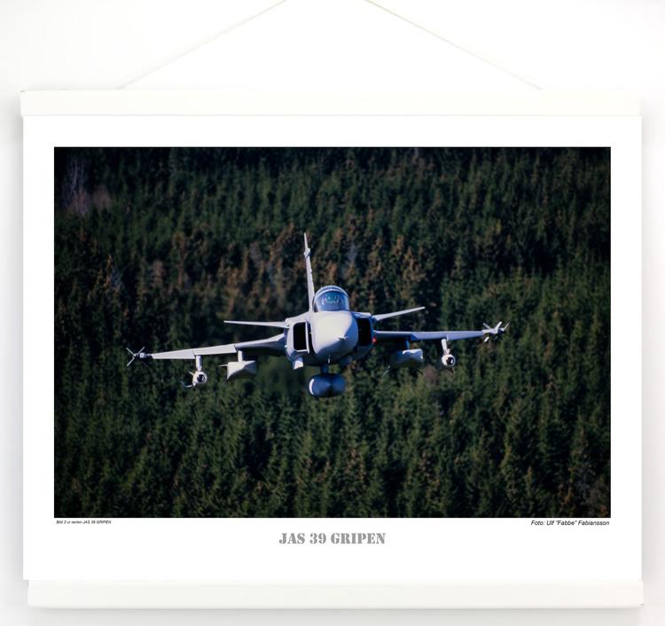 JAS 39 GRIPEN (3)