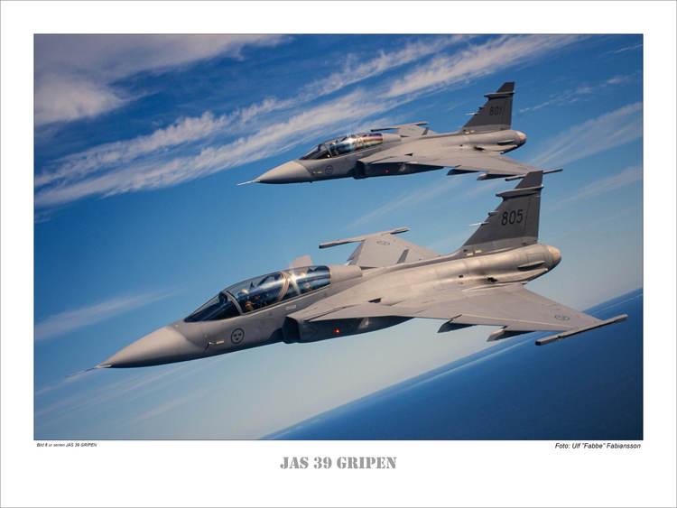 JAS 39 GRIPEN (6)