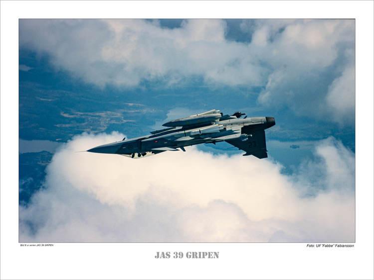 JAS 39 GRIPEN (8)