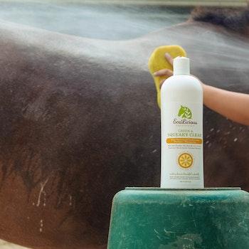 Ecolicious Squeky Green and Clean Shampoo 946 ml