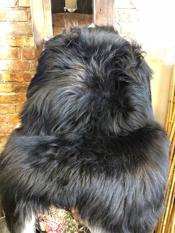Isländskt fårskinn-svart