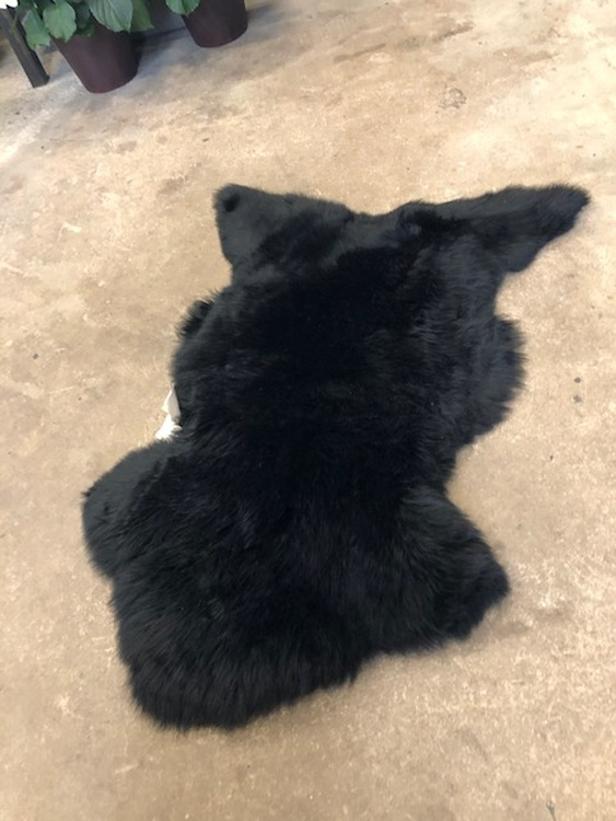 Svart australiensiskt fårskinn