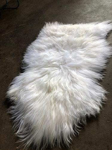 Isländskt fårskinn-vitt