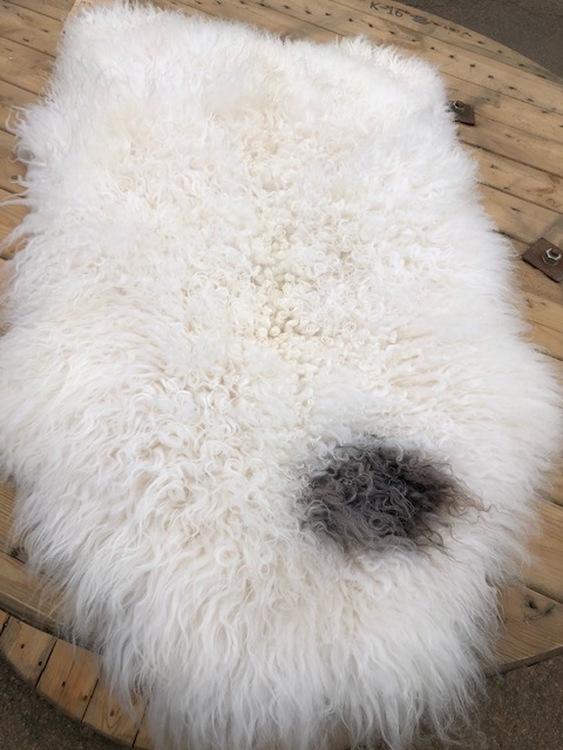 Svenskt fårskinn-vitt
