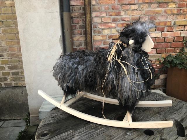 GUNGFÅR i  långhårigt isländskt fårskinn