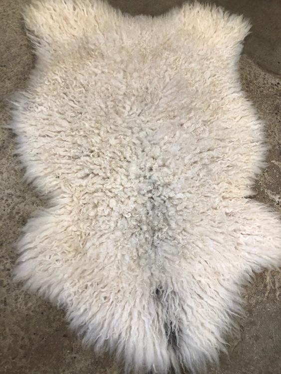 svenskt,krulligt fårskinn-28