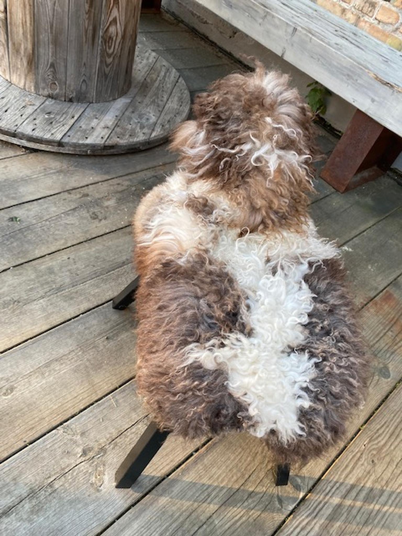 Fårstol  i vit/brun krullig  fårskinn