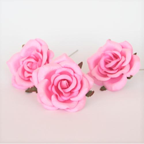 Cottage roses - Rosa, 5-pack, 6 cm