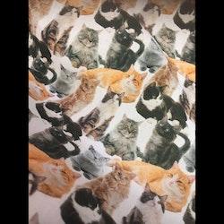 Tunt bomullstyg - Katter