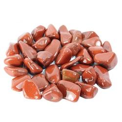 Röd Japsis Trumlad 2-3 cm