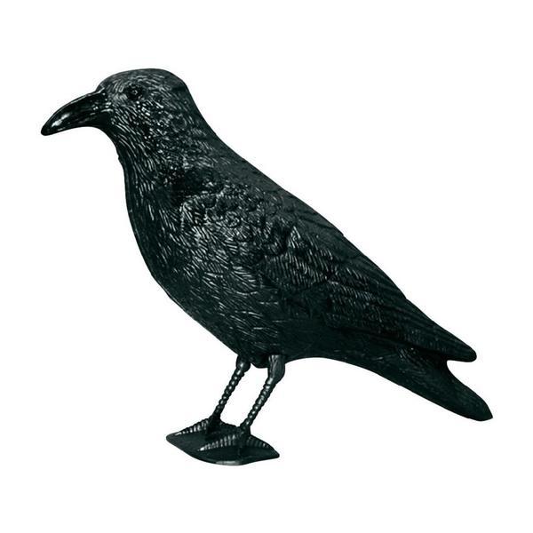 Fågelskrämma duvskrämma måsskrämma duvskydd