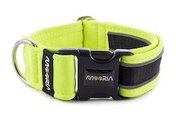 Reflex Hundhalsband Neon Gul