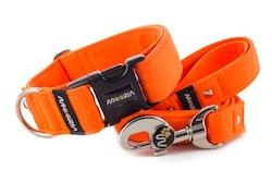 Hundhalsband Neon Orange