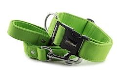Hundhalsband Lime