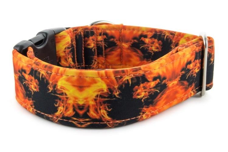 Hundhalsband Fire
