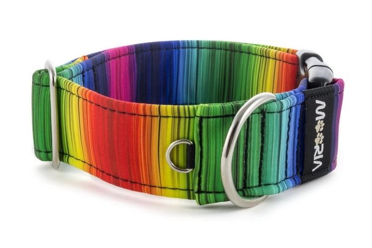 Hundhalsband Regnbåge