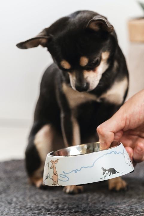 Mumin hundmatskål Small 14cm