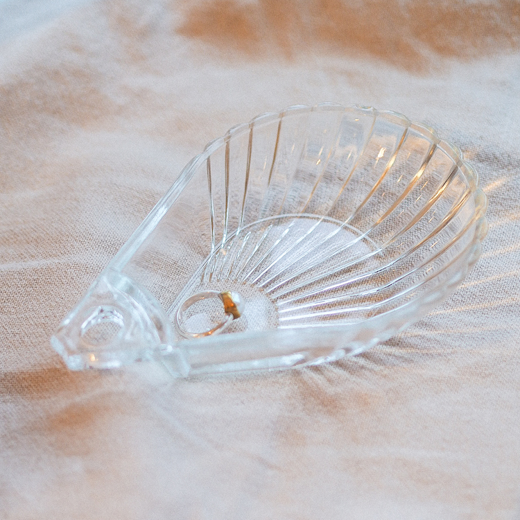 Big seashell in glass