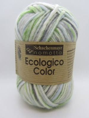 Ecologico Color