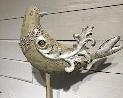 Ljusfågel