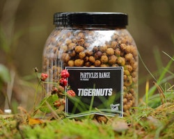 Dreambaits Tigers Ready to Go