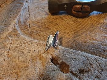 Silverring Iris