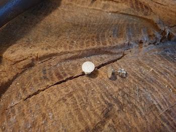 Silverörhänge små runda
